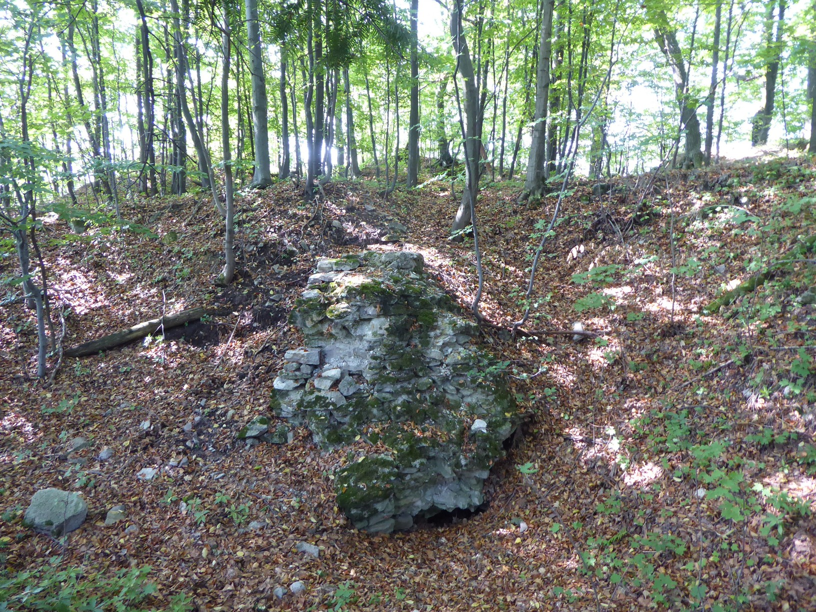 Pozostatky hradu Teplica – Pustý hrad