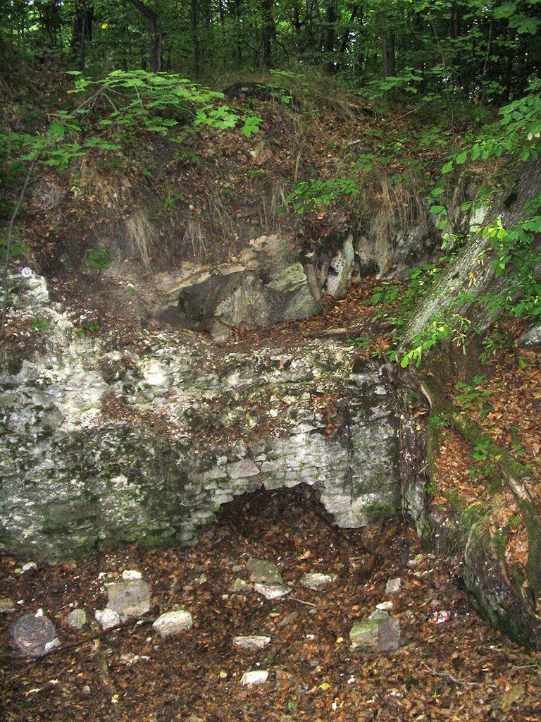 Hrad Teplica tvoria v súčasnosti len ruiny