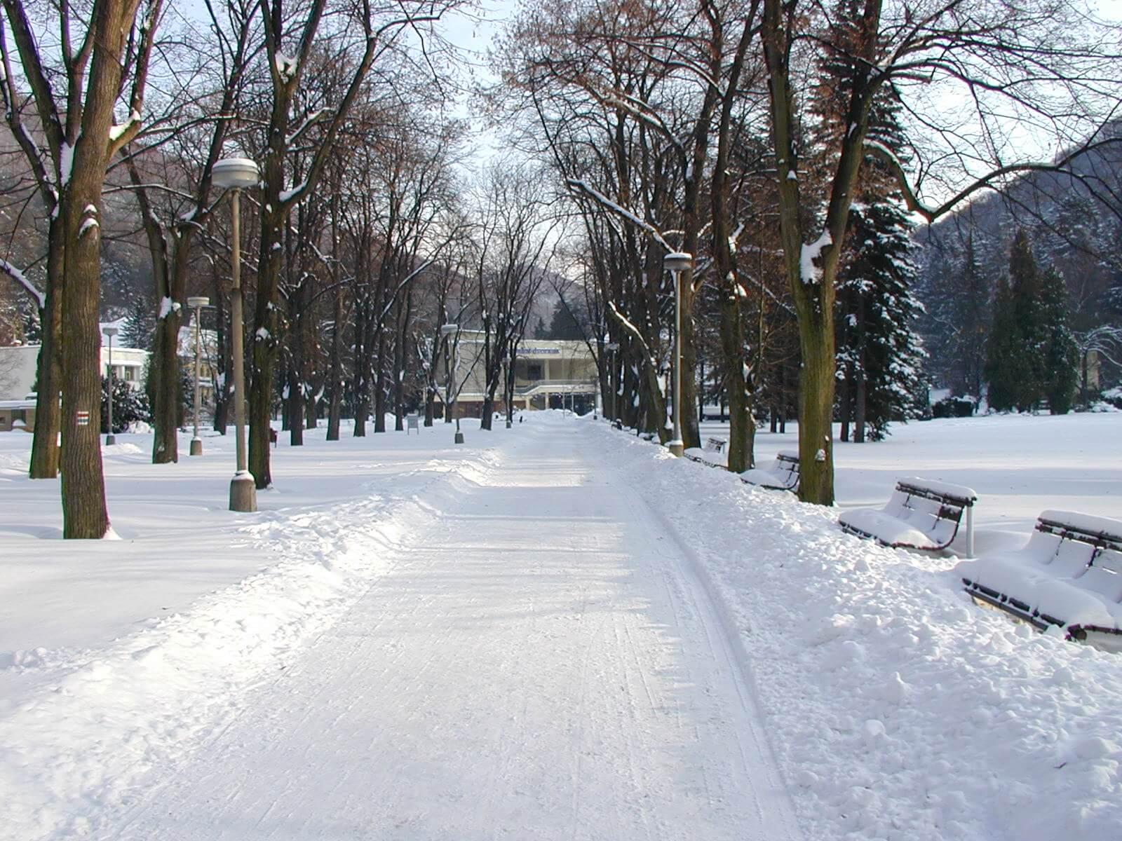 Zima v Kúpeľnom parku