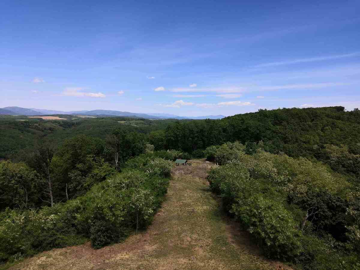 Lesy v okolí rozhľadne Maginhrad