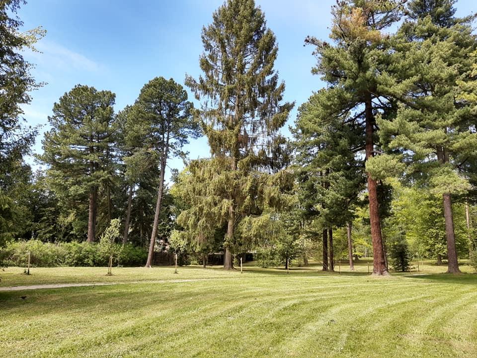 Arborétum - botanický park otvorený pre širokú verejnosť