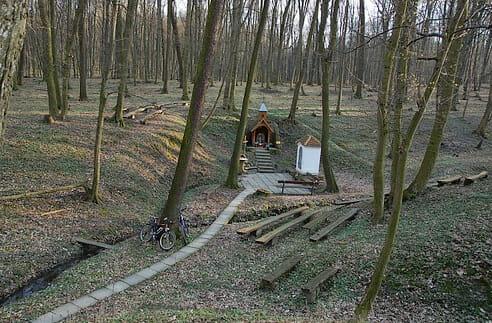 Hoštecká studnička, okolité lesy Smrdák
