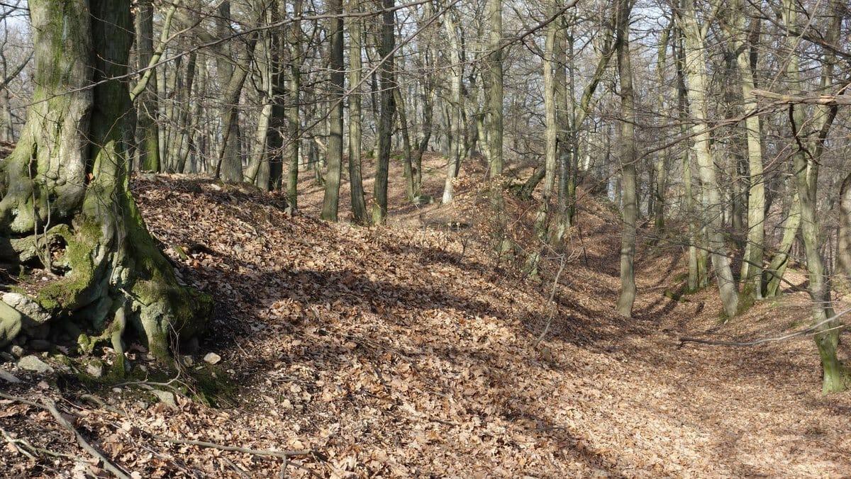 Pohľad na pozostatky Hradiska Zámčisko