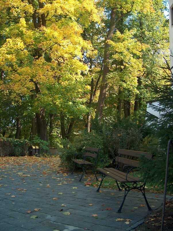 Anglický park pri kaštieli Strážky