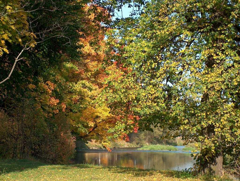Jazierko v parku pri kaštieli Strážky