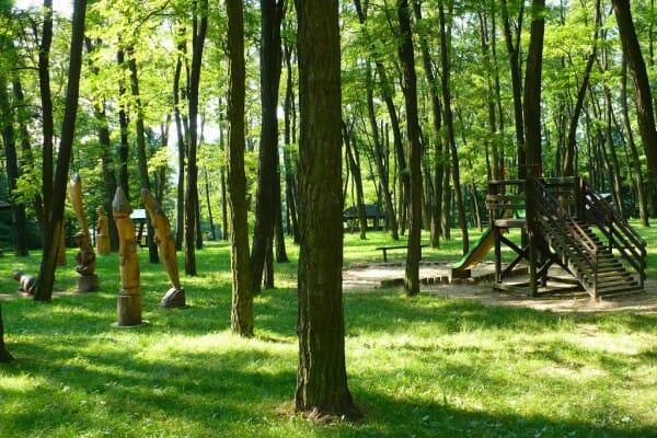 Sochy v parku