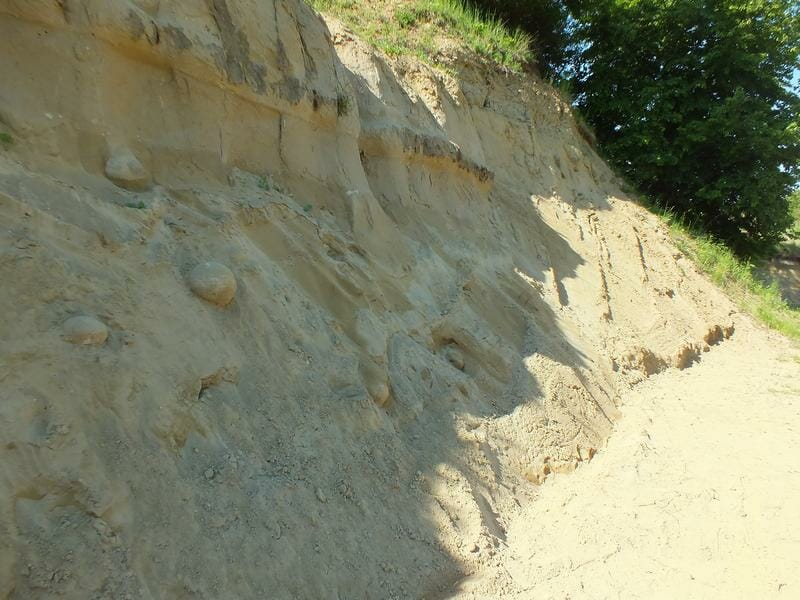 Lokalita Lipovianske pieskovce