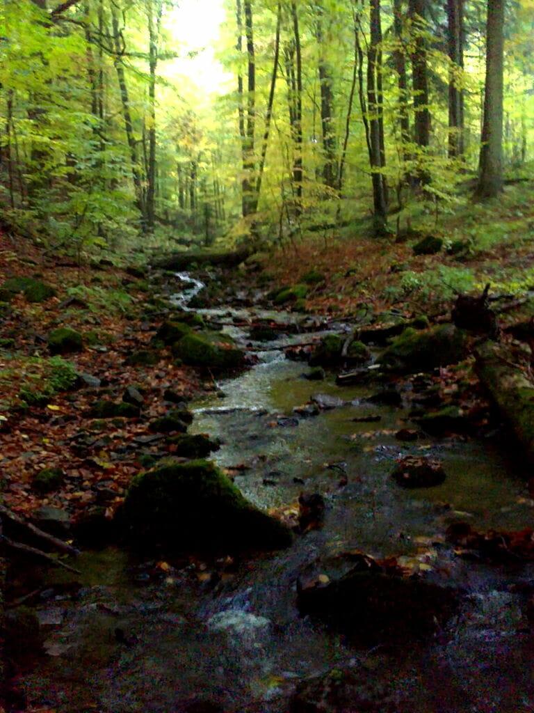 Údolie Badinskeho potoka